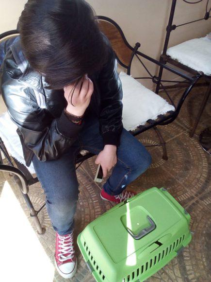 Martín y Dorita (en la caja) esperando que nos atendiera el veterinario.