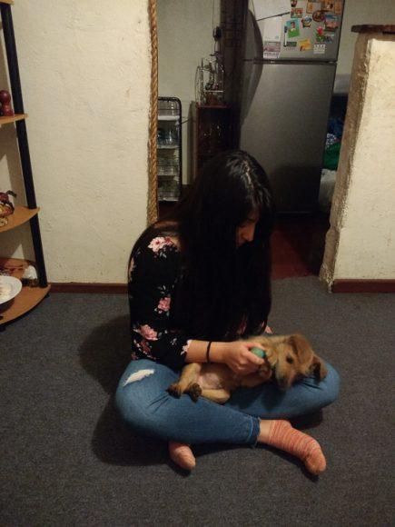 Tengo dos mascotas en la casa y siempre en algún momento del día comparto con los dos, sobre todo el perro que no conoce el espacio personal.