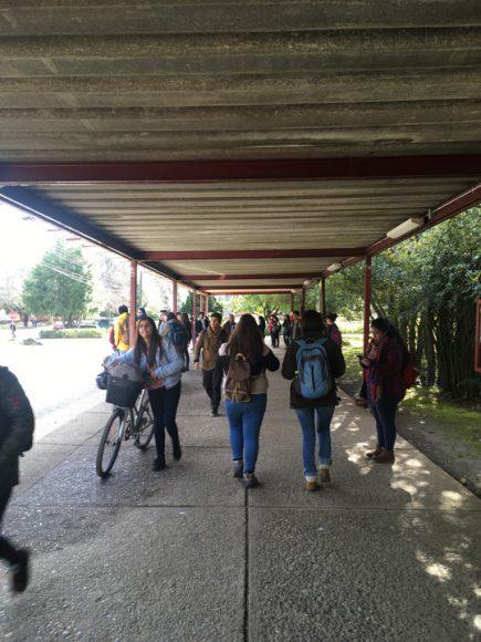 Estudiantes caminando una tarde vacia en el paradero de la universidad.