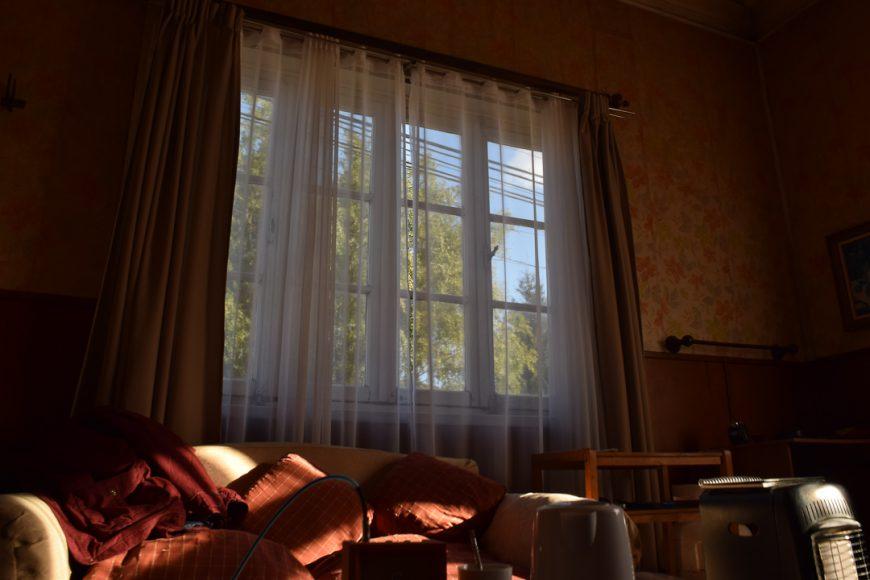 No es ajeno observar por la ventana o sentarse a recibir los primeros rayos de sol.