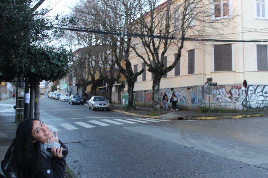 Valdivia, unos pocos árboles, graffitis, calle, amor. Arte.