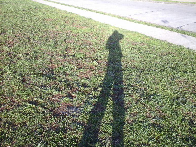 Mi sombra en el parque. Parezco de dos metros.