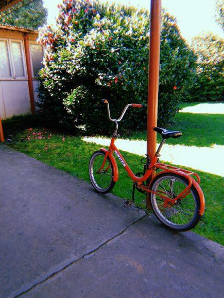 Me pareció bonita la combinación de la bicicleta con el fierro y las flores.