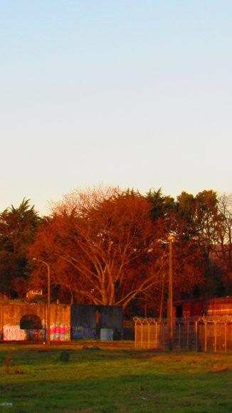 Siguen en pie las construcciones que fueron pilares de una ciudad, de una multitud que sabe que siguen allí, como esperando que alguien vuelva por ellas, o bien solo querían descansar y reciben felices otro atardecer, mucho más tranquilas contemplando el río y tomando el sol.